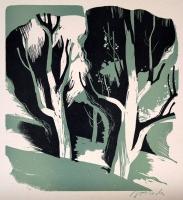 Hładki-Wajwód Salomea - Drzewo