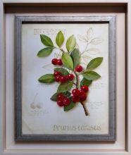 Adam Korsak Martwa natura obraz olejny 24 x 30cm /sprzedany
